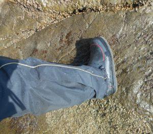 2014年04月07日 OK, 長靴, 江の島, ウノクソ, 磯釣り