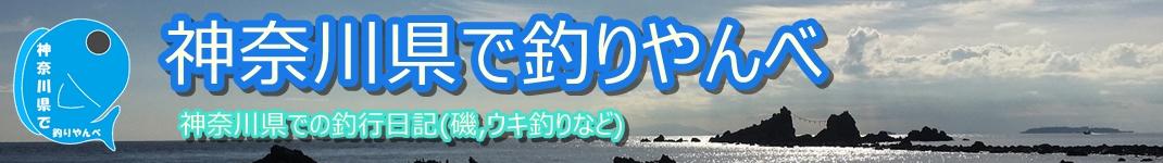 神奈川県で釣りやんべ