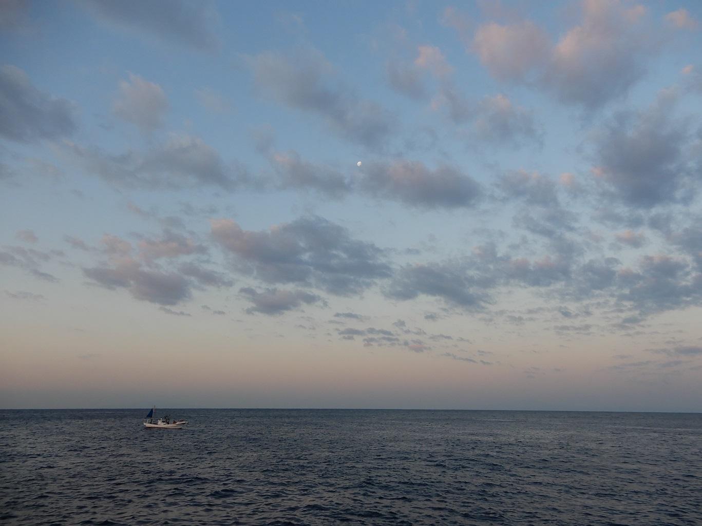 三浦, 城ヶ島, ヒナダン, 磯釣り
