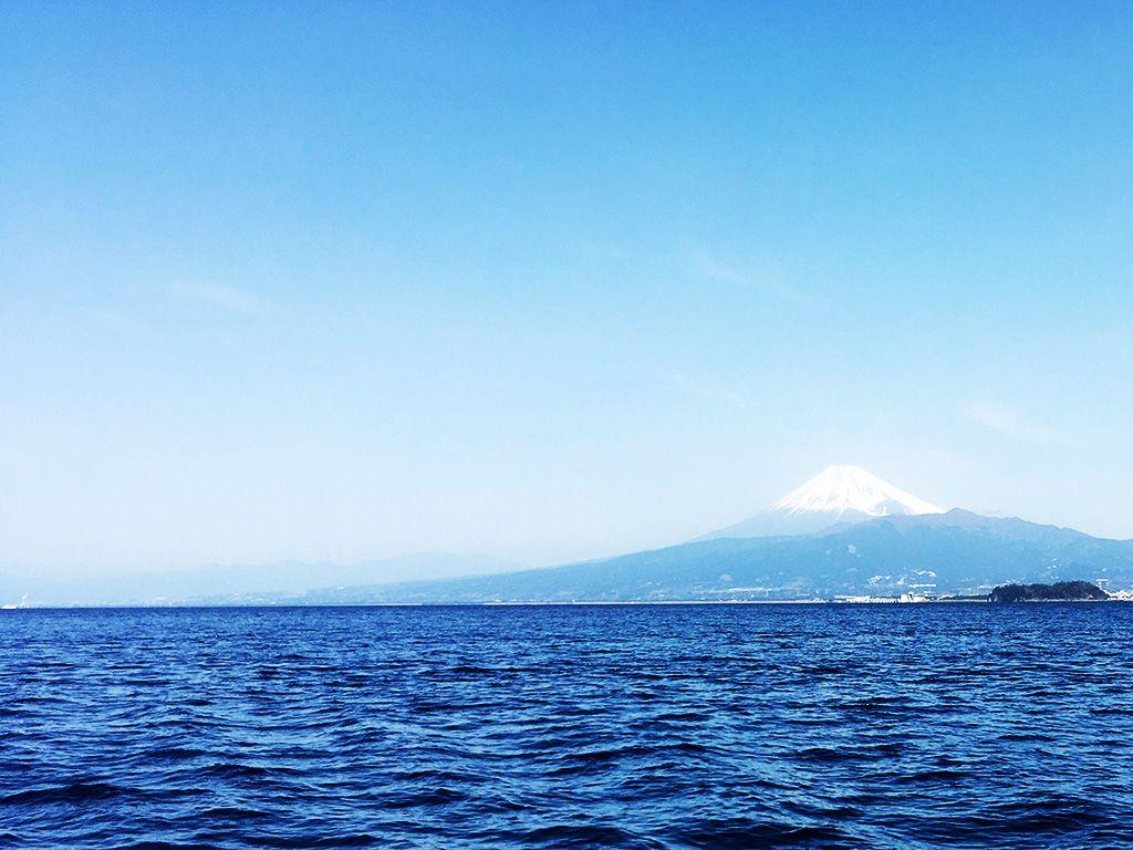 静岡, 沼津, 船釣り